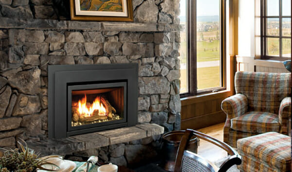 E20 Gas Fireplace Insert